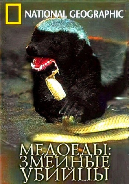 Медоеды. Змеиные убийцы / Honey Badgers of the Kalahari. Snake Killers (2001/DVDRip)