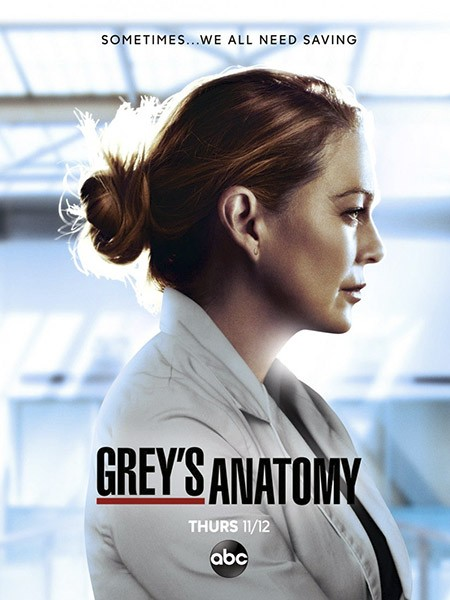 Анатомия Грей / Анатомия страсти / Greys Anatomy (17 сезон/2020/WEB-DLRip)