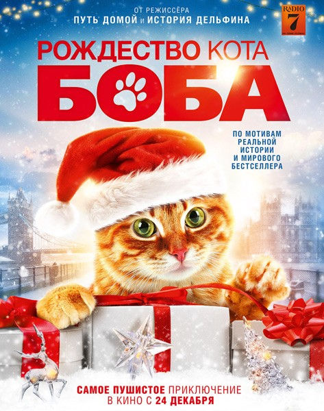Рождество кота Боба / A Christmas Gift from Bob (2020/WEB-DL/WEB-DLRip)